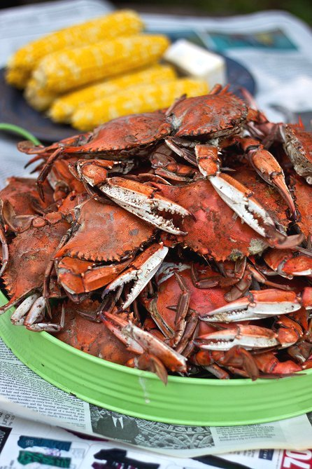 Steamed Blue Crabs Tide and Thyme